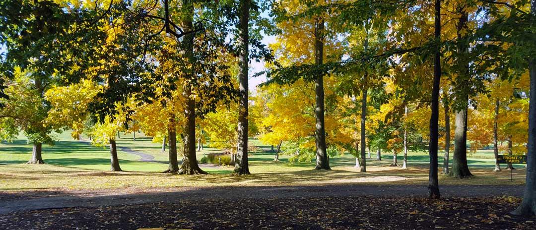 Raintree GC Uniontown Ohio
