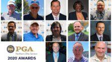 2020 NOPGA Section Award Winners